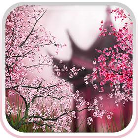 Tải Ứng Dụng Sakura - Hình Nền Động Hoa Anh Đào Cho Android