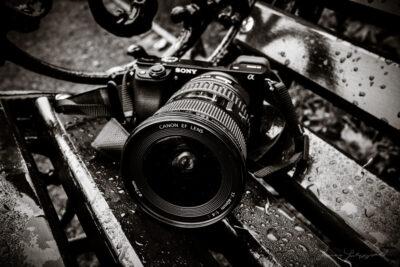 Đánh giá Sony A6000 chụp ảnh có tốt không chi tiết? 10 lý do nên mua