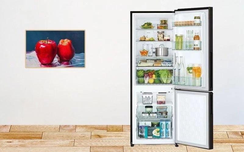 Tủ lạnh thiết kế ngăn đá dưới tiện ích, đáp ứng nhu cầu sử dụng ngăn lạnh lớn