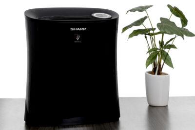 Review máy lọc không khí Sharp bắt muỗi có tốt không, giá bán, lợi ích