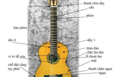 Tự học Guitar: 5 điều lưu ý dành cho Newbie