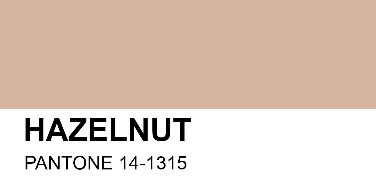 HAZELNUT – Tông Màu Được Mong Đợi Của Năm 2017