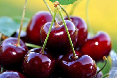 Cherry Úc nhập khẩu giá bao nhiêu, mua ở đâu uy tín nhất tại HN, HCM
