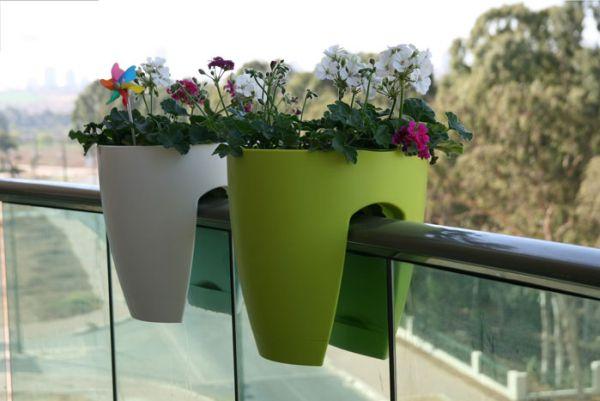Tận dụng ban công để trồng hoa bằng các chậu treo