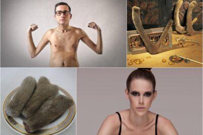 4 tác dụng của nhung hươu với người gầy và 3 cách dùng giúp tăng cân hiệu quả