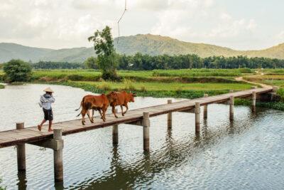 Đi Phú Yên mùa nào đẹp, tháng nào thời tiết lý tưởng nhất 2020
