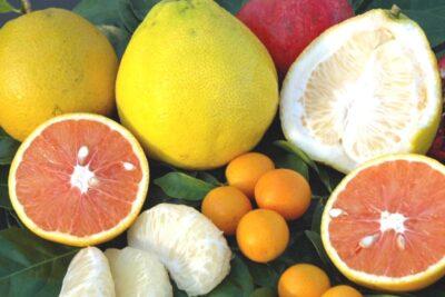 12 cách ăn bưởi giảm cân tiêu mỡ thần tốc giúp dáng thon sau 7 ngày