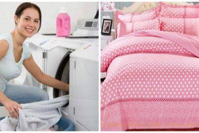 Hướng dẫn cách giặt chăn bông bằng tay, máy giặt trắng sạch như mới