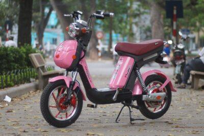 Kinh nghiệm mua xe đạp điện cho học sinh an toàn hợp túi tiền nhất