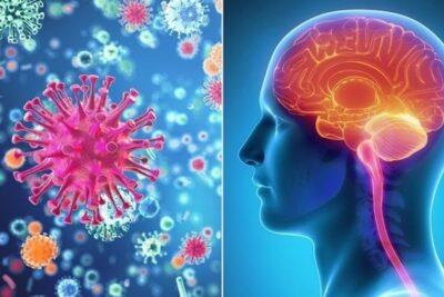 Bệnh viêm màng não: Nguyên nhân, triệu chứng, cách điều trị