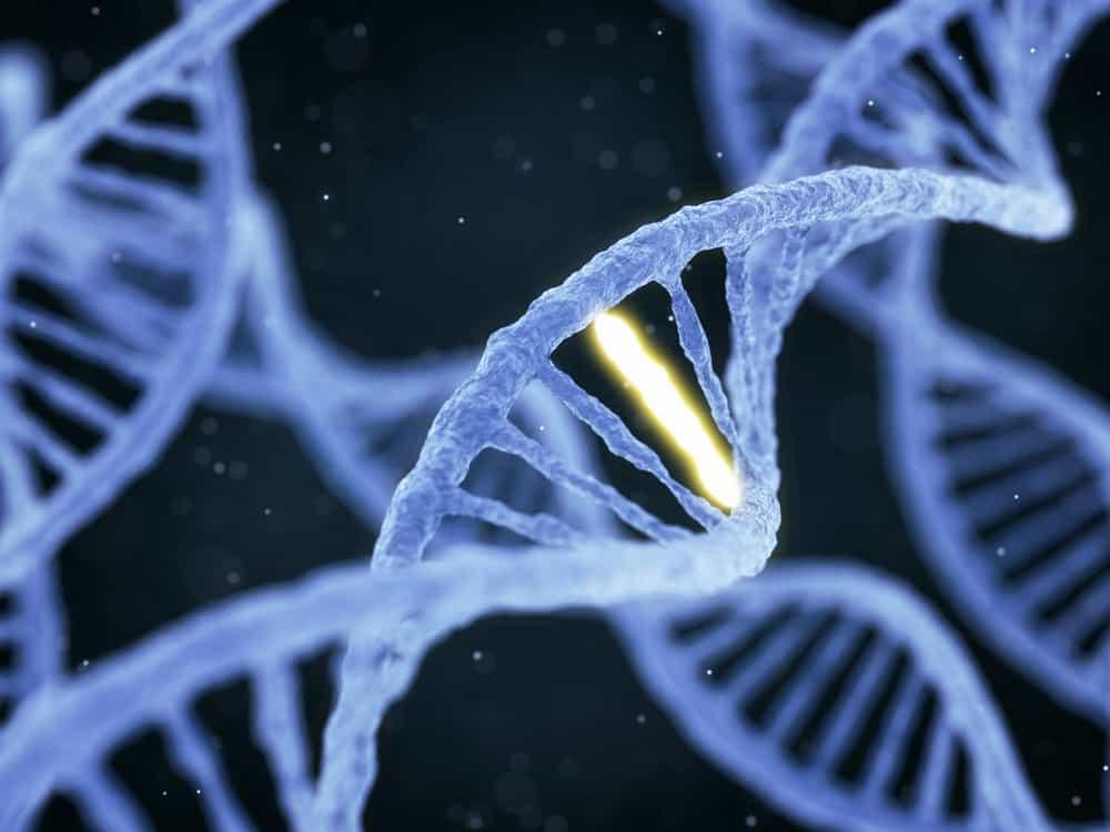 Xét nghiệm gen giúp tìm ra đột biến gen gây nguy cơ ung thư