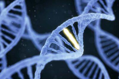 Xét nghiệm gen trong chẩn đoán ung thư: Tác dụng, Quy trình, Các loại