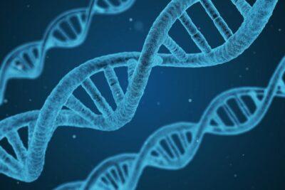 Đột biến gen ở người là gì, phân loại, nguyên nhân, ý nghĩa