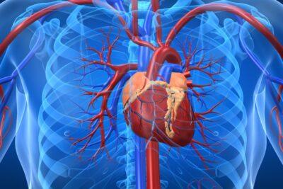Review phương pháp xét nghiệm gen di truyền bệnh lý tim mạch tốt không