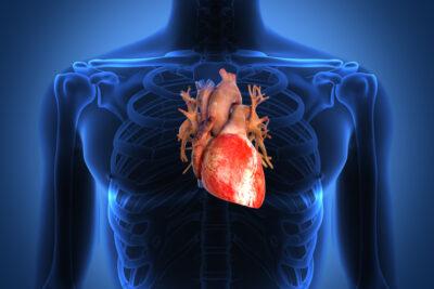 Review phương pháp điều trị bệnh tim mạch bằng tế bào gốc như thế nào