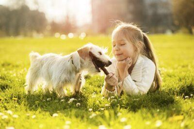 Liệu pháp điều trị bằng thú cưng có hiệu quả đối với trẻ tự kỷ không