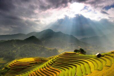 Kinh nghiệm đi đèo Khau Phạ: Đường đi, Thời tiết, Điểm checkin đẹp