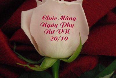 27 lời chúc ngày phụ nữ Việt Nam 20/10 tặng mẹ, bạn gái, nữ đồng nghiệp
