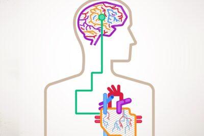 4 cách xoa bóp cho người bị tai biến đúng đủ giúp đả thông kinh mạch