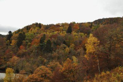 16 nước nên đi ở châu Âu mùa thu 2020 có cảnh đẹp nổi tiếng nhất