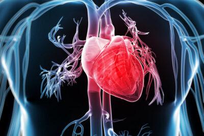 13 yếu tố nguy cơ gây bệnh tim mạch và cách phòng tránh hiệu quả nhất