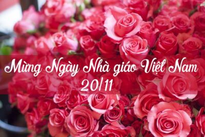 30 lời chúc mừng ngày nhà giáo Việt Nam ý nghĩa nhất tri ân thầy cô